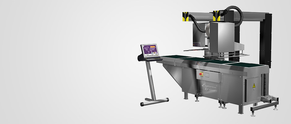 Automatic weigh-price labelling machines ES 6002